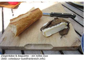 Ziegenkäse Spezialität Südfrankreich Delikatesse